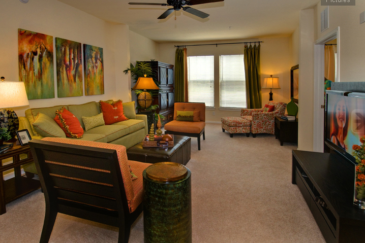 Living Area at these Round Rock Apartments