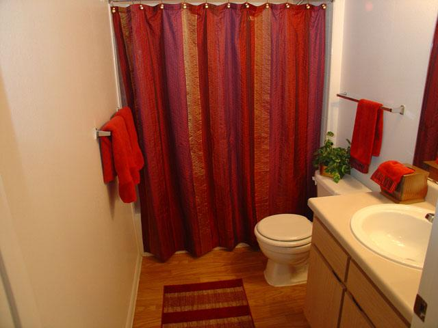 Round Rock Apartments with Spacious Bathroom