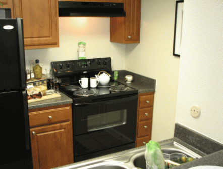 Gourmet Kitchens at Apartments in West Houston