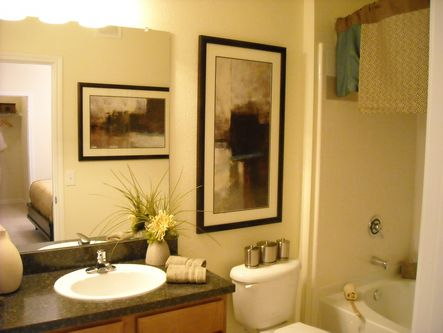 Spacious Bathroom at Round Rock Texas Apartments