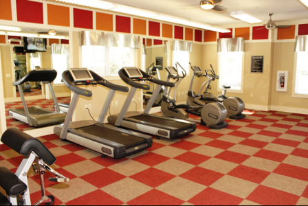 Gym at Alta Roxbury