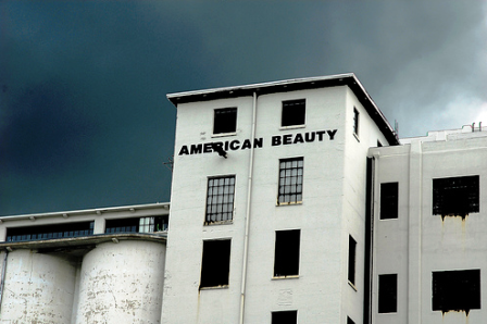 American Beauty Mill Lofts Exterior
