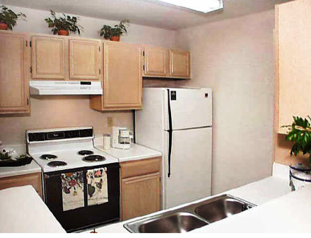 Gables Citywalk Apartments offer Gourmet Kitchens