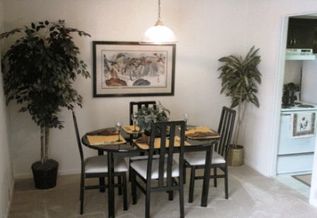 Houston Apartments Featuring Spacious Dining Rooms