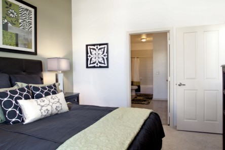 Desoto Town Center Apartments Photos