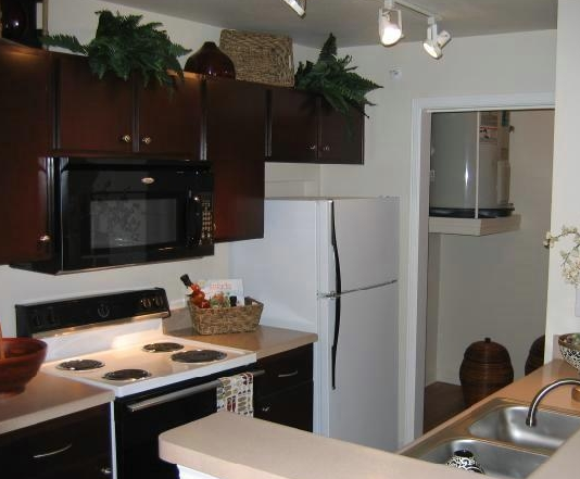 Gourmet Kitchens at these Austin Domain Apartments