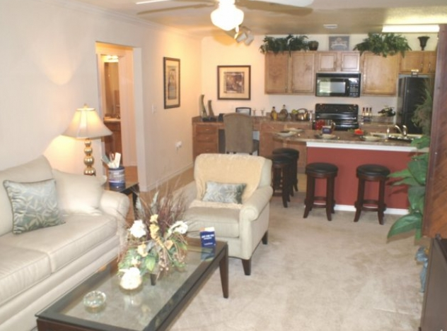 Living Area at Apartments in Cedar Park