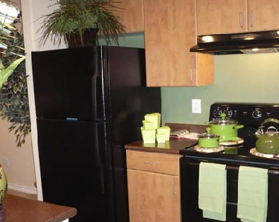 Gourmet Kitchens at these Houston Alief Apartments