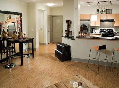 Las Colinas Apartments with Hardwood Floors - AMLI at Escena