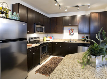 Apartments in Las Colinas with Gourmet Kitchens - AMLI at Escena