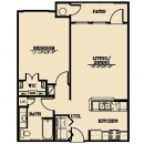 1 Bedroom, 1 Bathroom Downtown Austin Apartment